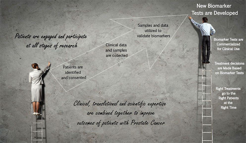 translational-research-image