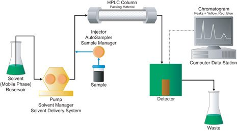Lipidomics_HPLC
